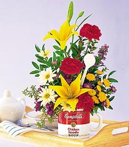 "The Teleflora Campbells? ""Get Well"" Bouquet"