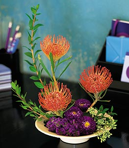 Pin Cushion Protea Bowl