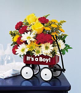 Teleflora?s Baby?s First Wagon
